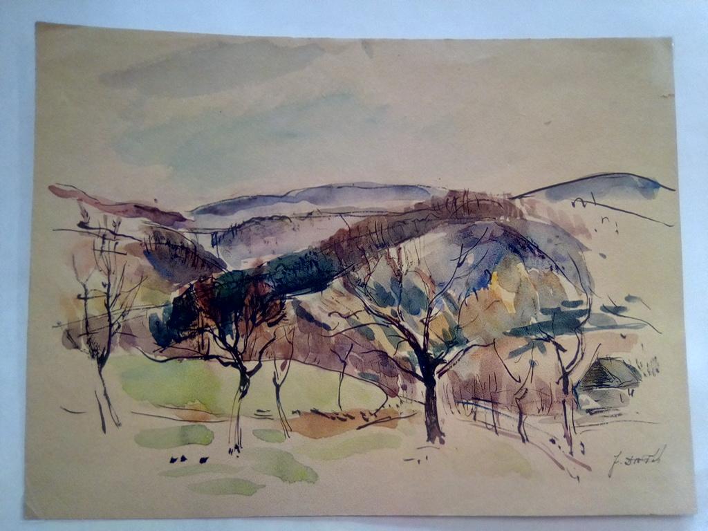 Krajina Se Stromy Kresba A Grafika Trigon Nakladatelstvi